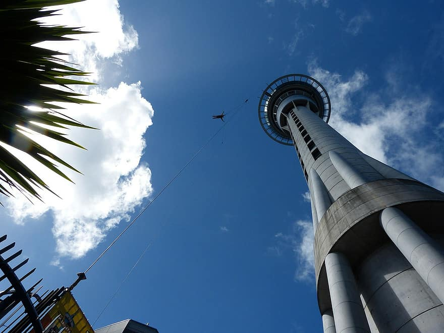 skydiving from the sky tower in auckland new zealand