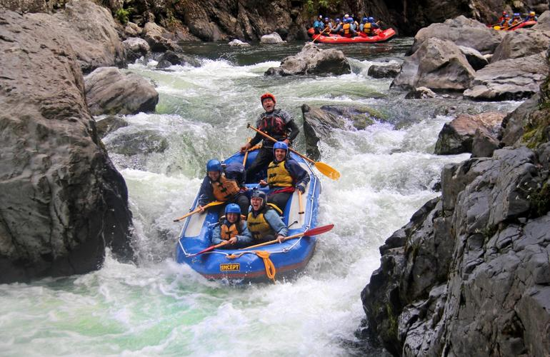 Whitewater river rafting in Rangitikei river in Taihape