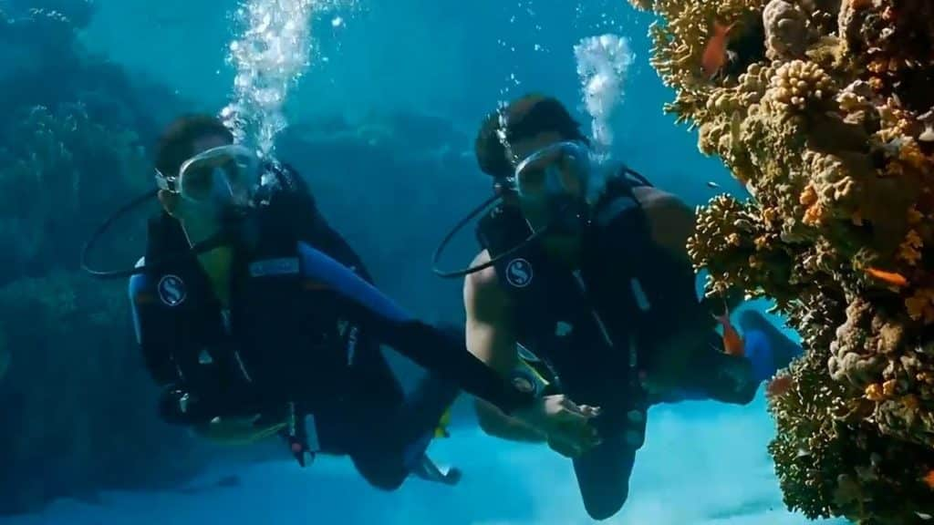 scuba diving in costa brava during the znmd road trip