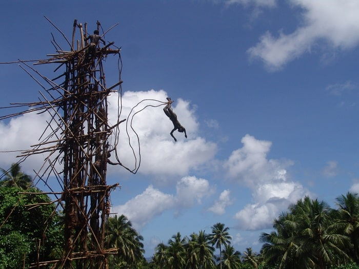 bungee jumping using vines