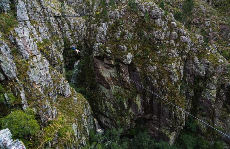 Person zip lining in the heart of the Cape Town Forest
